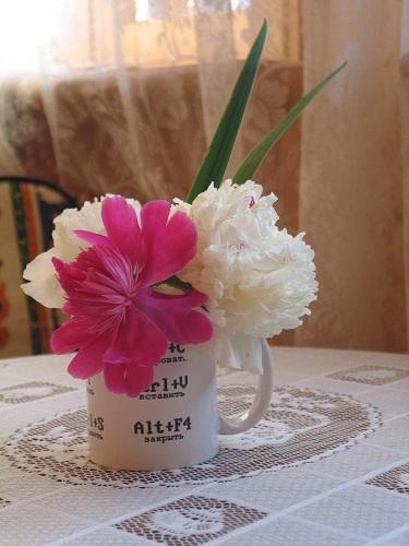 Кружка и цветы