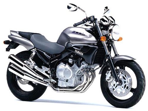 Yamaha FZX250 Zeal