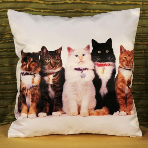 Принты на подушках