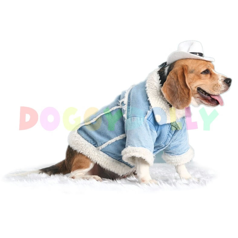 одежда со знаком собаки