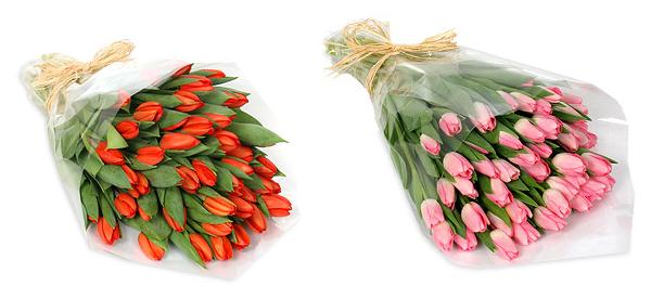 Красные и розовые тюльпаны