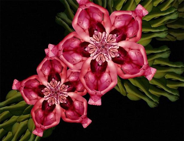 цветы из людей