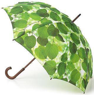 зонт листва