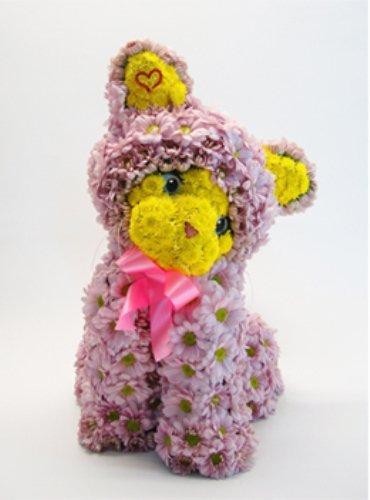 Игрушки из цветов. Кошечка