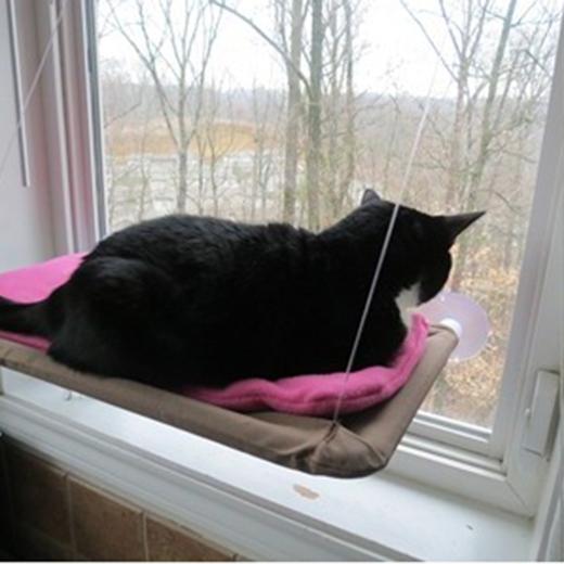 лежак для кошки на присосках
