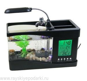suvenir akvarium